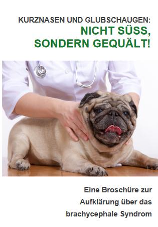Flyer der Bundestierärztekammer zum Thema Qualzuchten