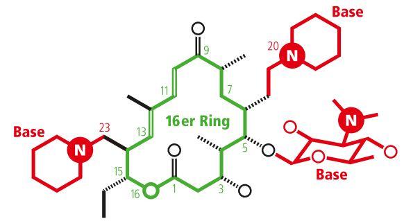 Molekül Tildipirosin