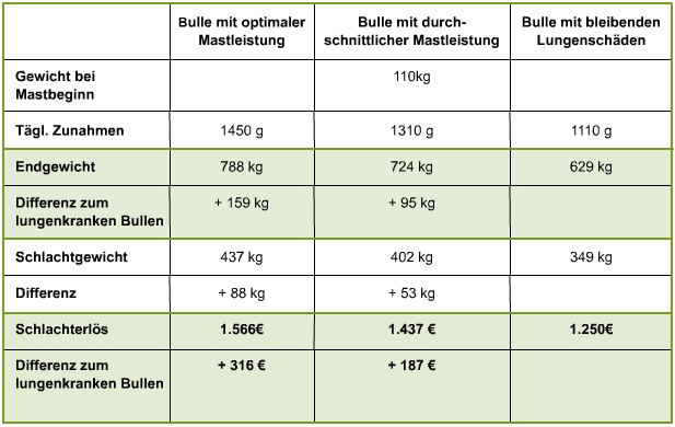 Tabelle Leistungseinbußen durch Rindergrippe
