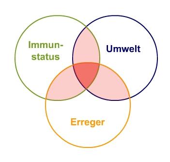 Zusammenspiel endogener und exogener Krankheitsfaktoren