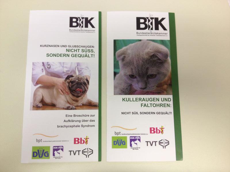 Links der erste und rechts der zweite Flyer (Nov  2019) der Bundesteriärztekammer zur Aufklärung von  künftigen Tierbesitzern.