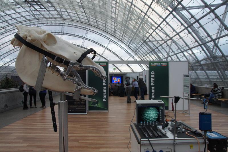Das Forum Pferd mit Exponaten der Leipziger  Veterinär-Anatomie schloss die Brücke zwischen  Leipziger Tierärztekongress und der parallel  ablaufenden Partner Pferd.