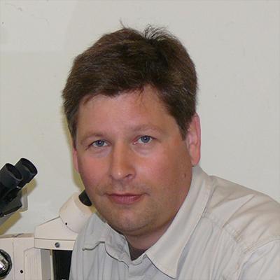Dr.  Florian  Brandes